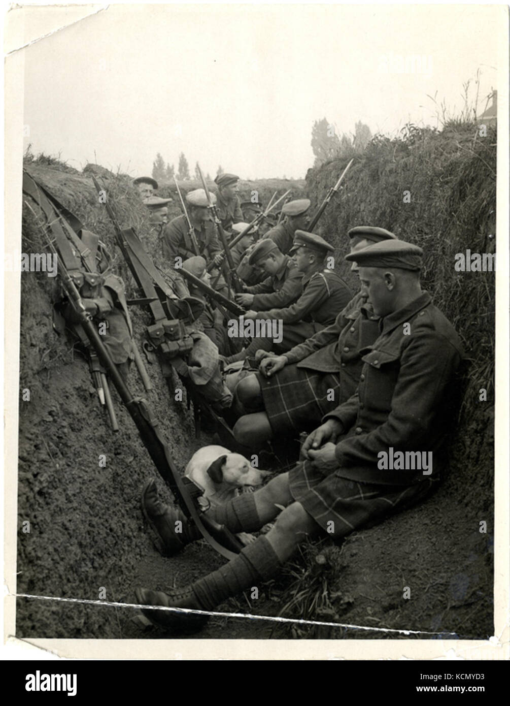 Highland Territorials in a trench (Photo 24 247) - Stock Image