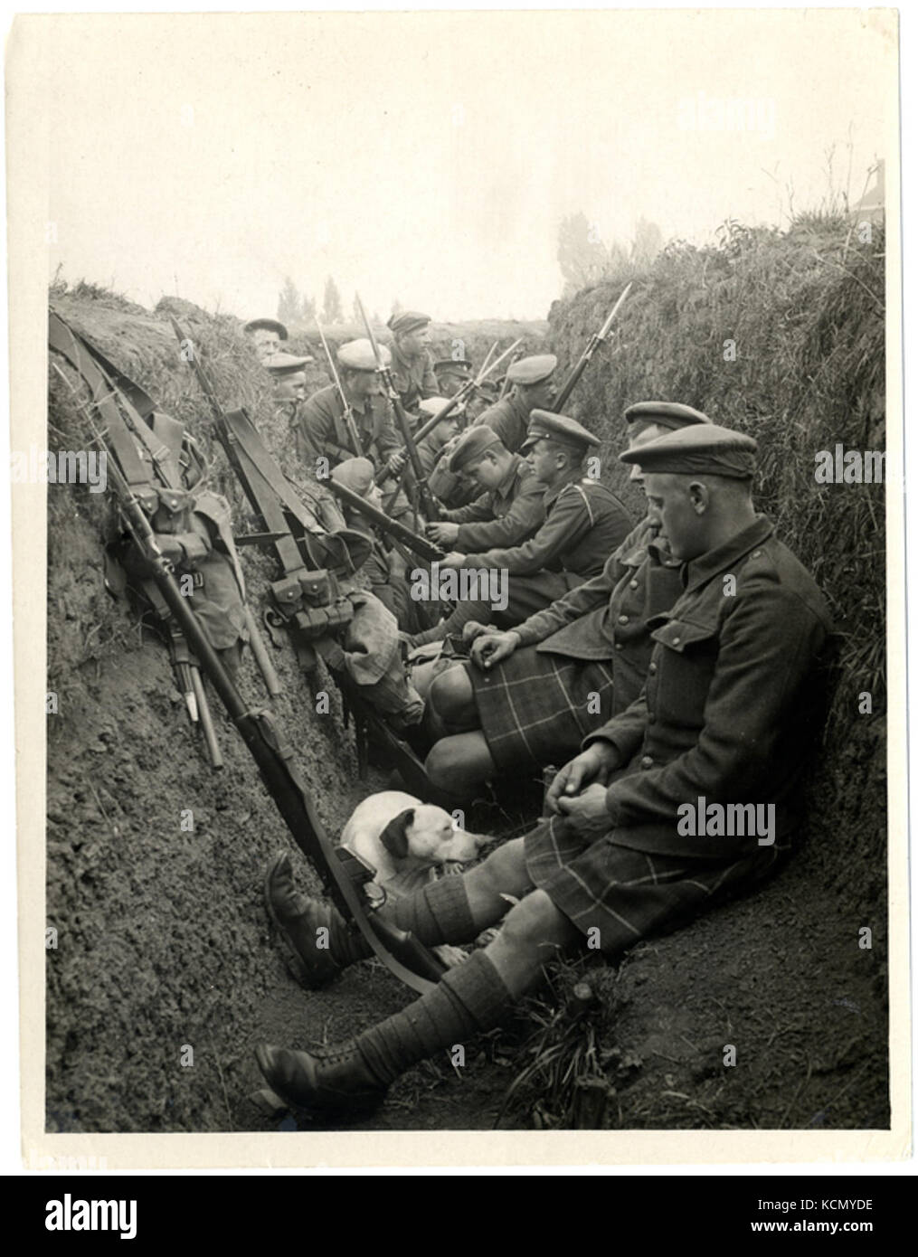 Highland Territorials in a trench (Photo 24 248) - Stock Image