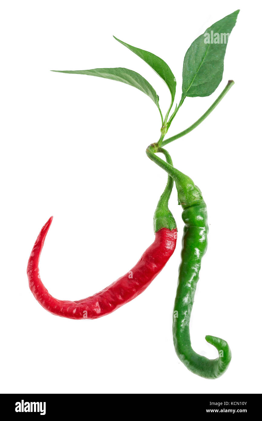 Green, cayenne red colored chillies isolated on white background. Stock Photo