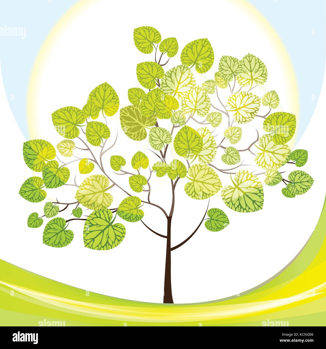 tree with green leaves, sunny day, vector illustration - Stock Vector