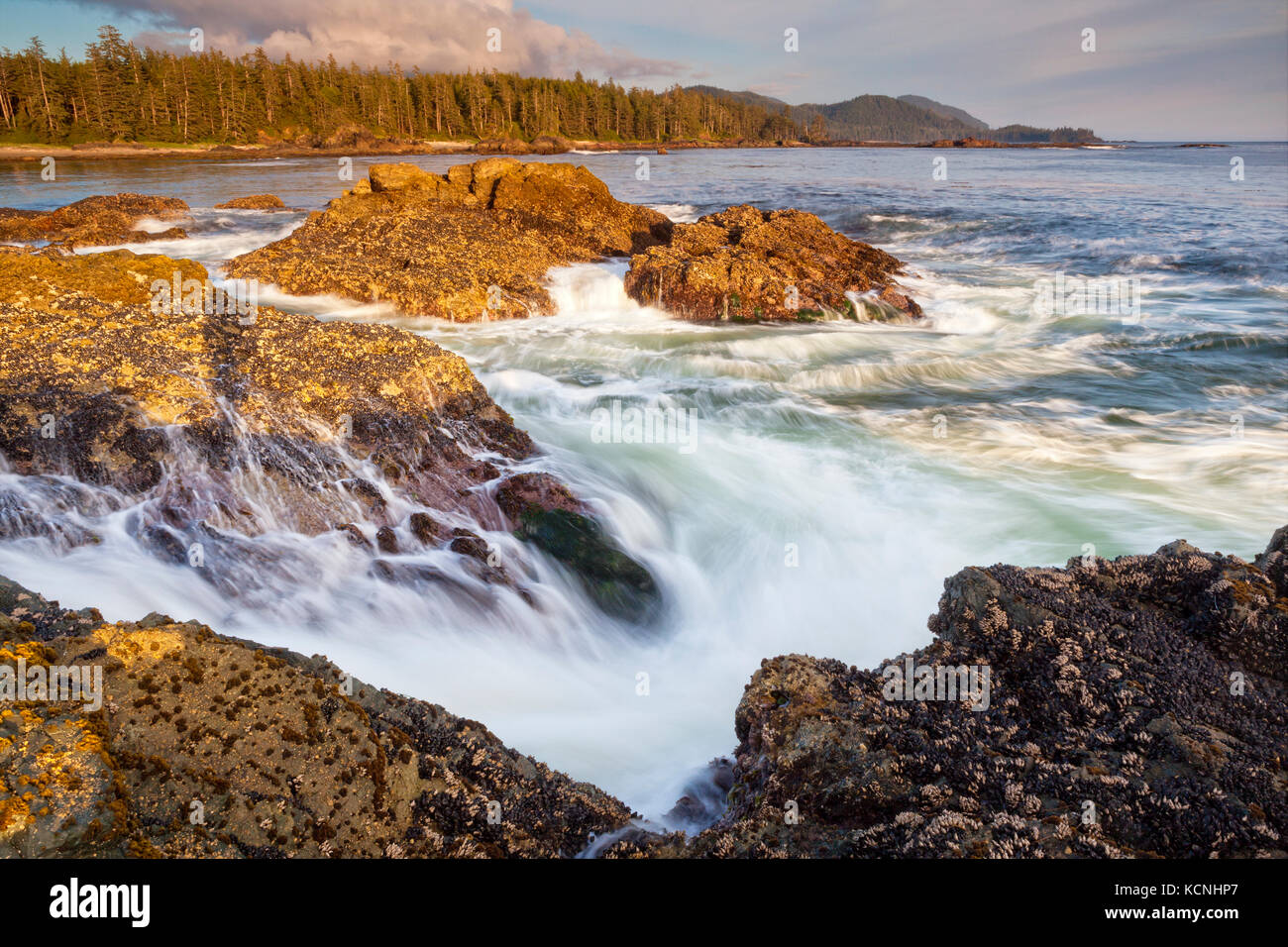 Wild West Coast of Northern Vancouver Island near Cape Scott Provincial Park, British Columbia, Canada, Waves crashing - Stock Image