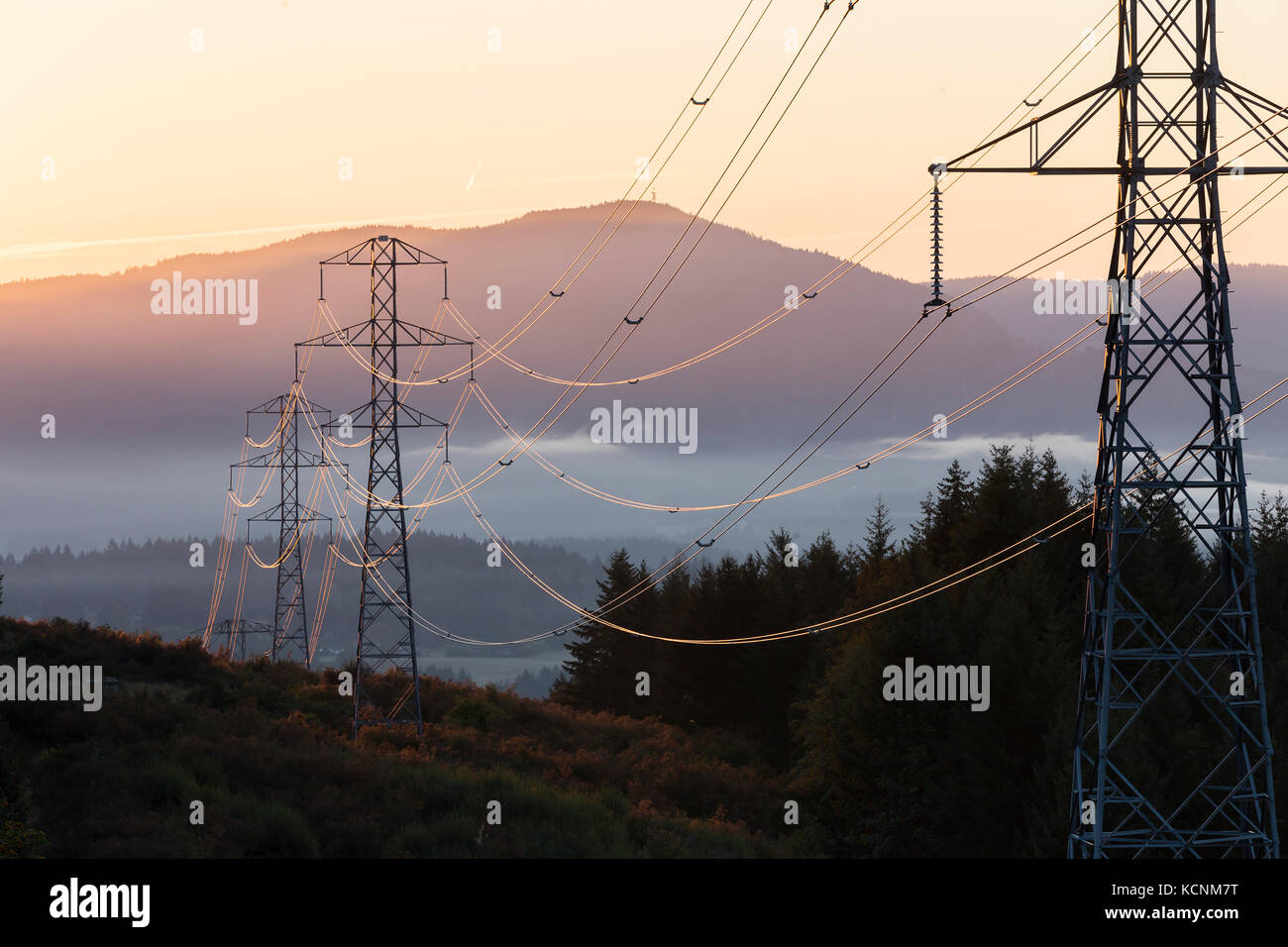 High tension power lines are illuminated by an early morning sunrise.  Duncan, Vancouver Island, British Columbia, - Stock Image