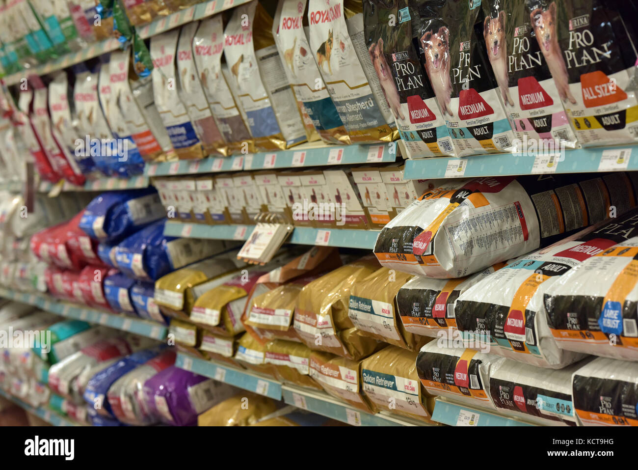 a variety of different dog foods and feeds in large bags on shelves at a large pet care store or shop retailing - Stock Image