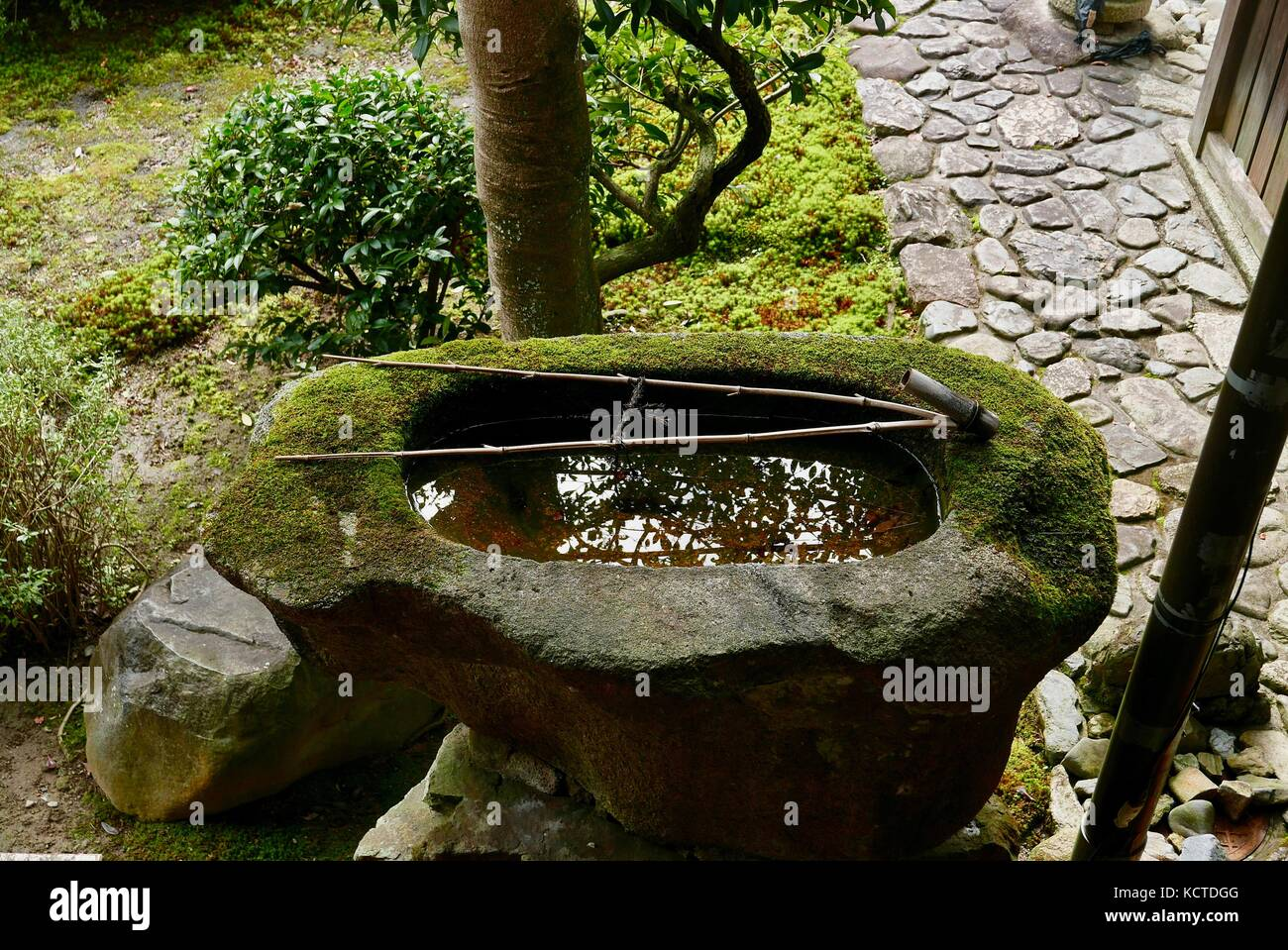 Stone Water Troughs In Japanese Garden   Stock Image