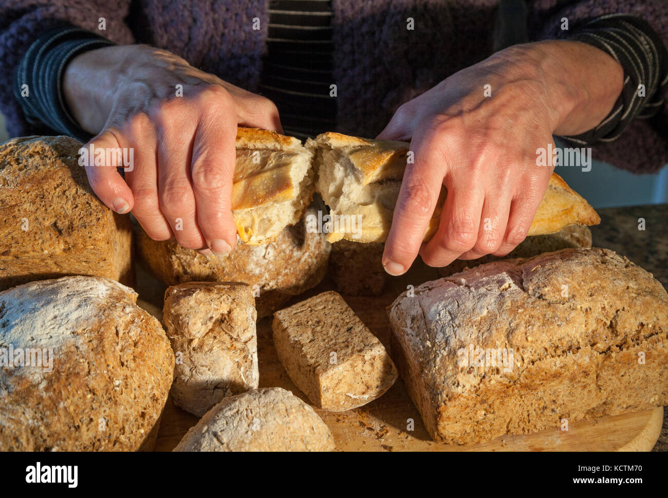 Breaking into a loaf, home made bread Stock Photo