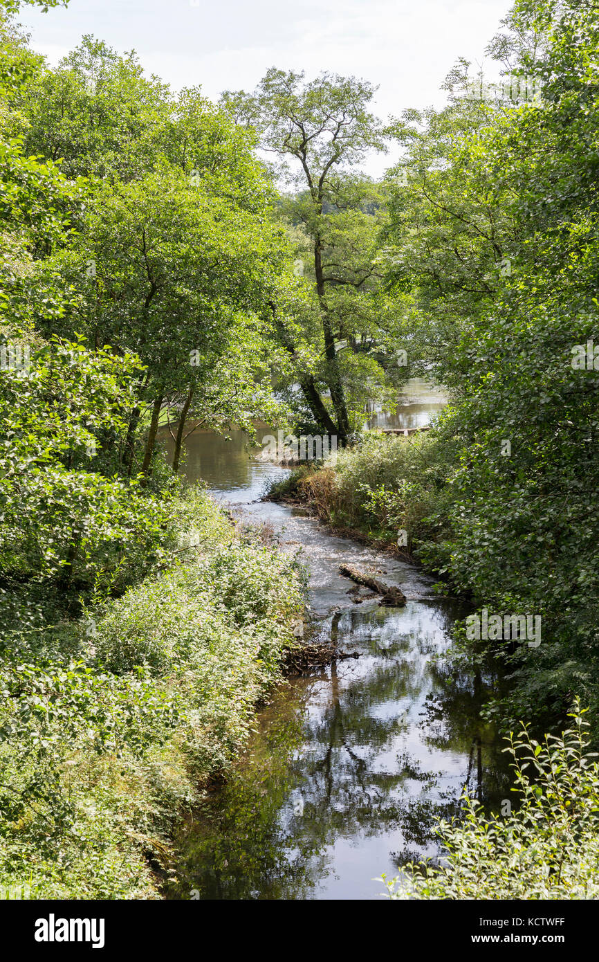 River running through the Penllergare estate, former home of John Dillwyn Llewellyn, Swansea, Wales, UK - Stock Image