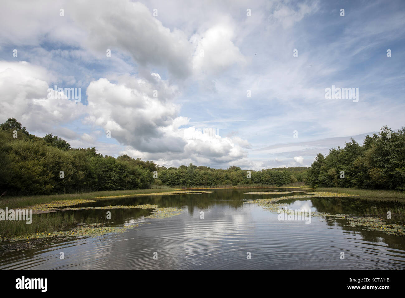 Lower Lake, Penllergare Valley, Swansea, Wales, UK - Stock Image