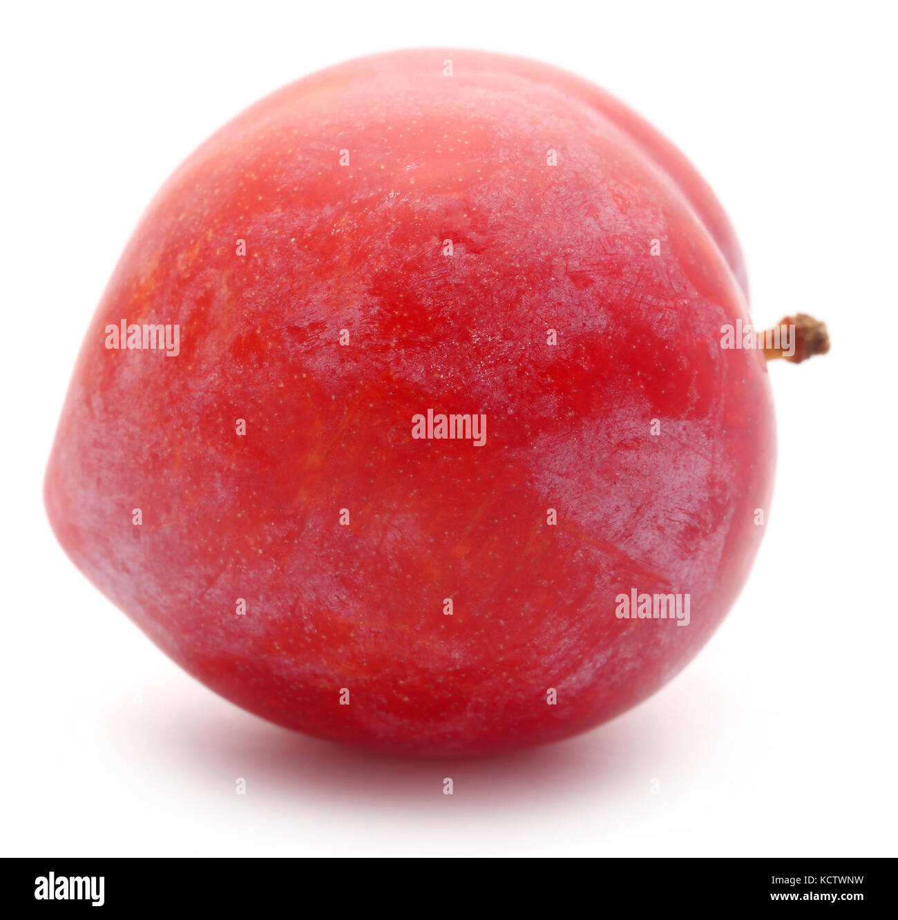 Single plum closeup over white background - Stock Image