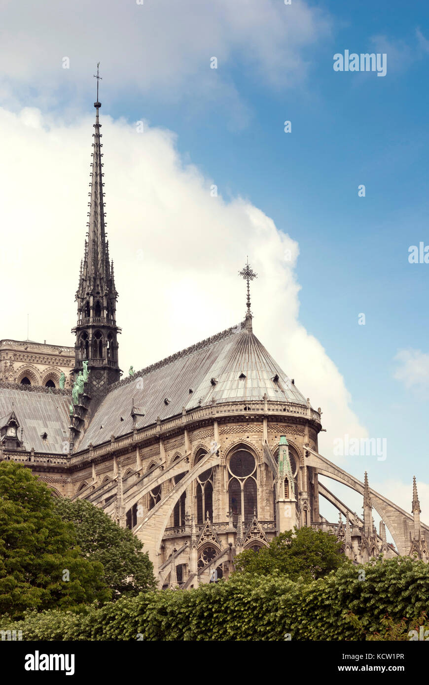 Notre-Dame de Paris, View of southern facade from the Seine - Stock Image