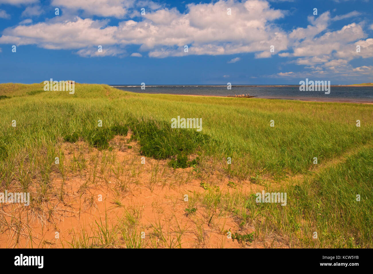 Sandy coastline along the GUlf of St. Lawrence, New London, Prince Edward Island, Canada - Stock Image