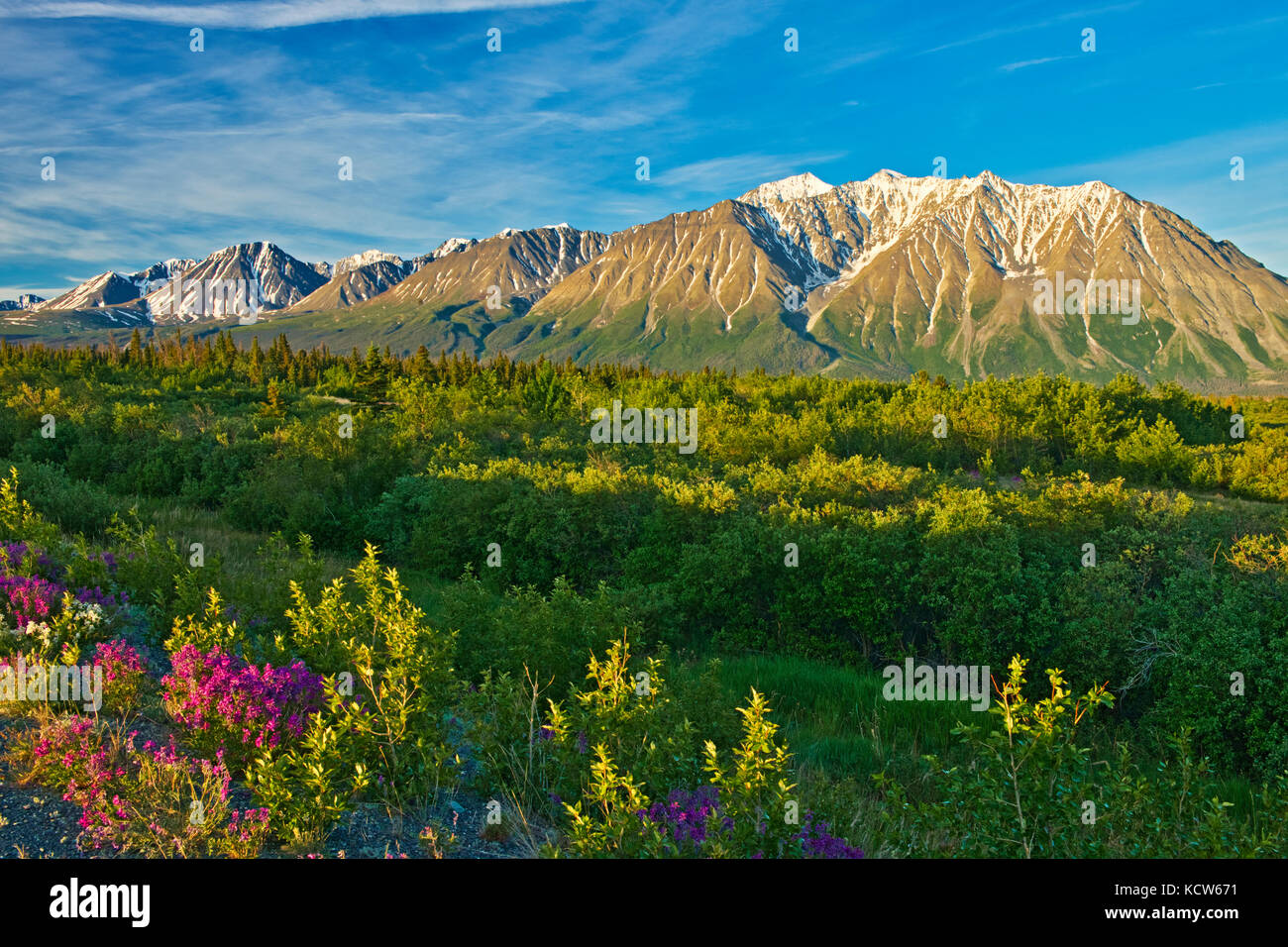 St. Elias Mountains, north of Haines Junction, Yukon, Canada - Stock Image