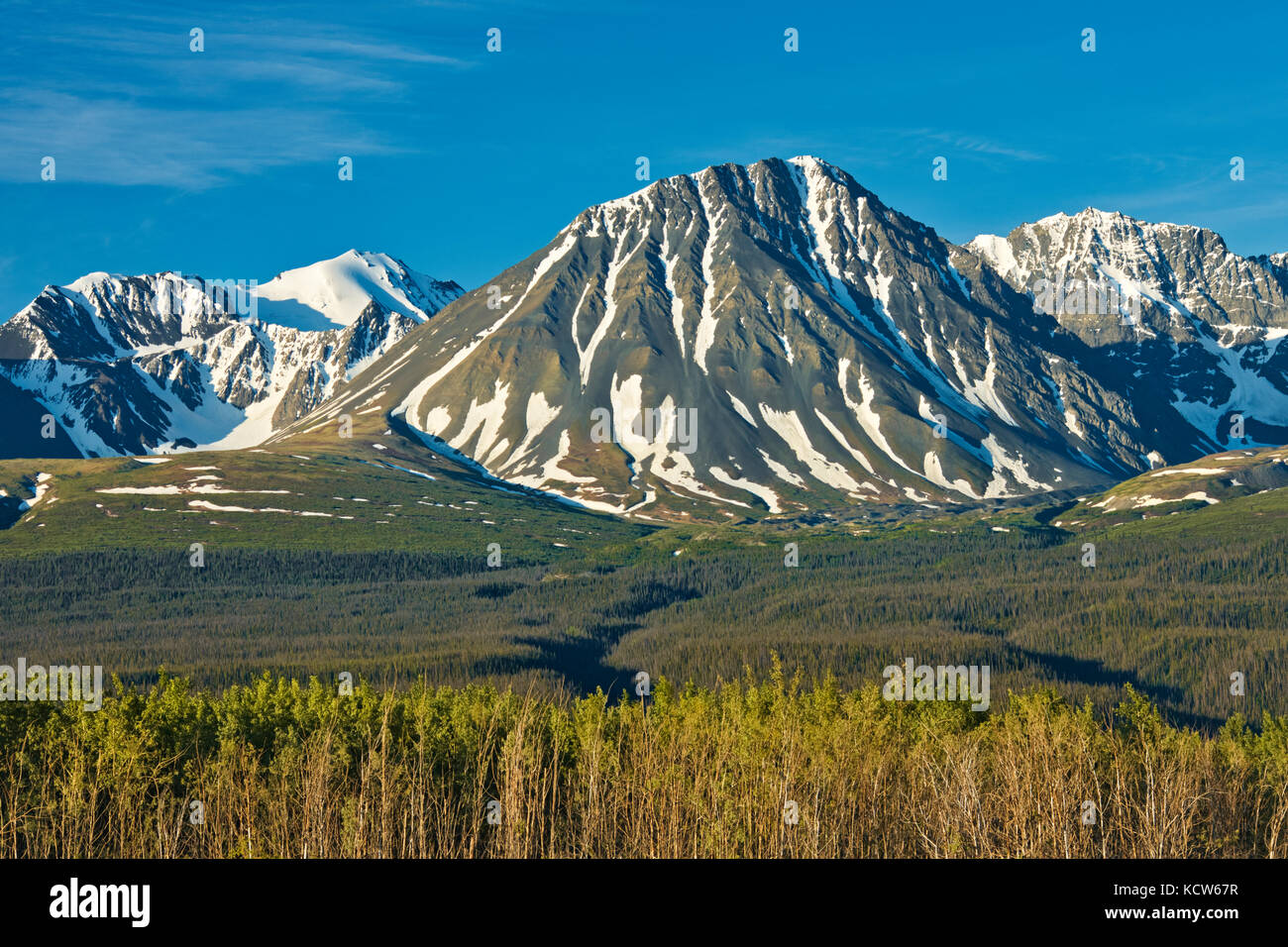 St. Elias Mountains ear Haines Junction, Yukon, Canada - Stock Image