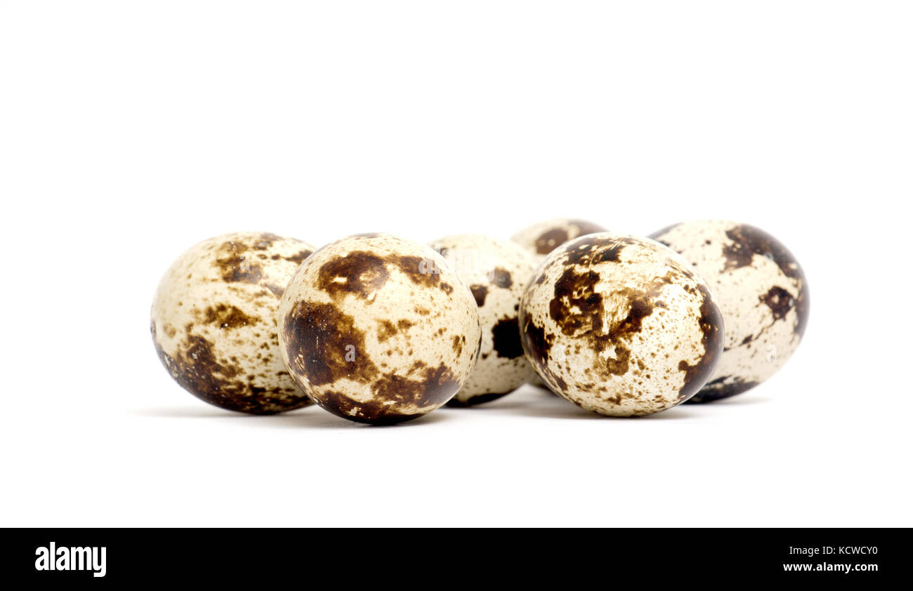 picture of a japanese quail eggs ,food and health concept - Stock Image