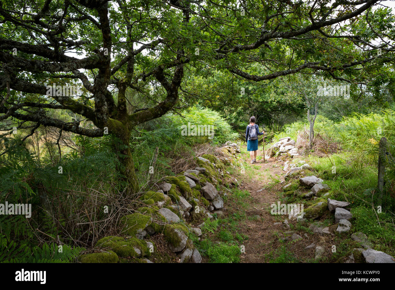 Young caucasian woman hiking out doors on a old Roman road. - Stock Image