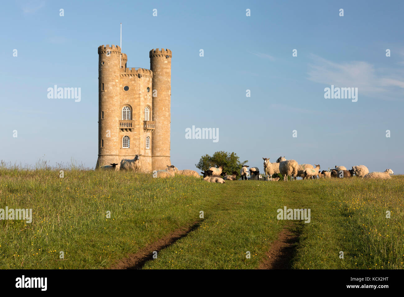 Broadway Tower with grazing sheep in grass field, Broadway, Cotswolds, Worcestershire, England, United Kingdom, - Stock Image