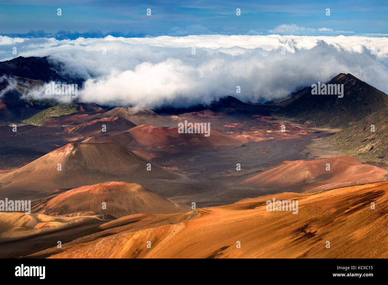 Rim of a colorful cinder cones and features stunning views across the crater floor Haleakala National park, Hawaii - Stock Image