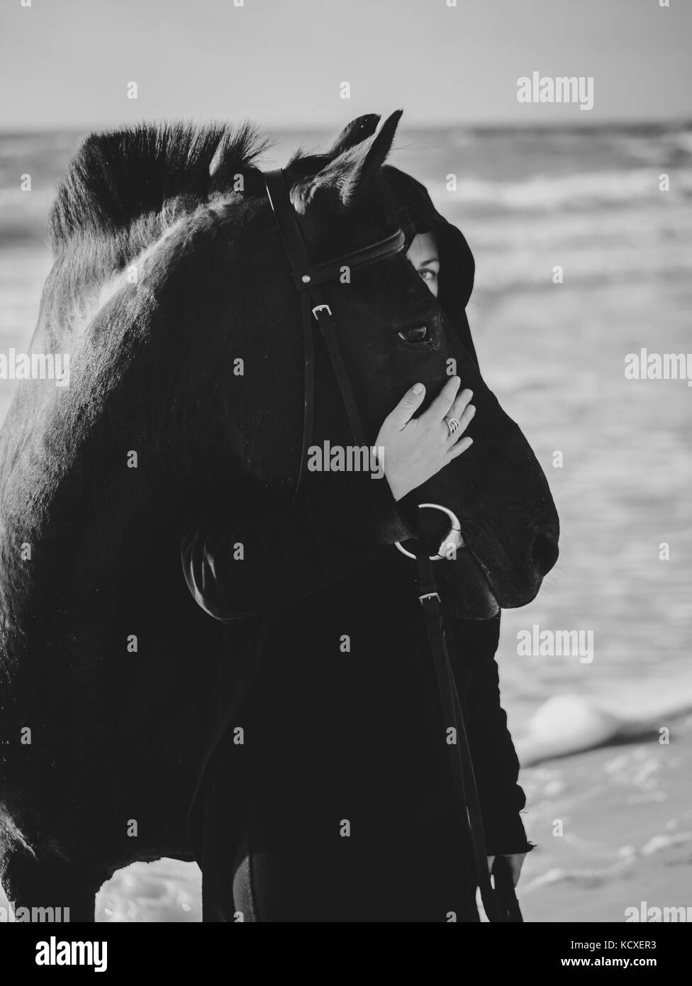 Young Blonde woman stroking and hugging horse. Beautiful lady with her black stallion on seashore enjoying nature. - Stock Image
