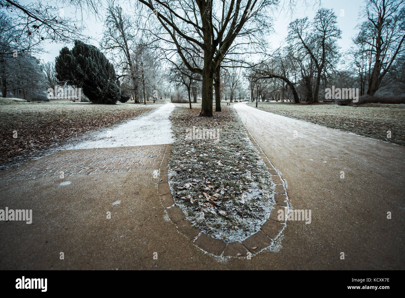 Park winter two paths - Stock Image