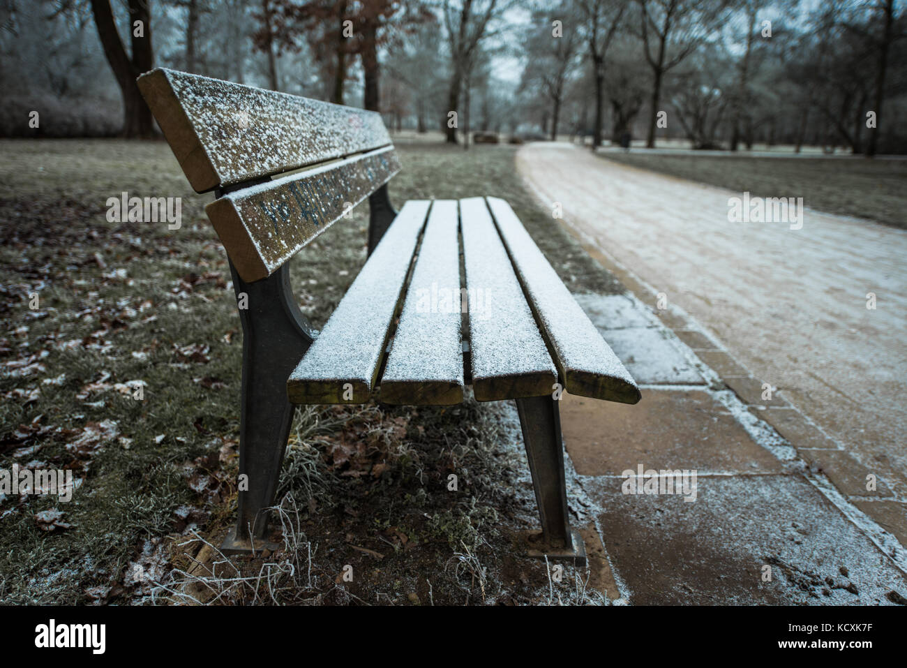 Bench in a park on a cold winter day - Stock Image