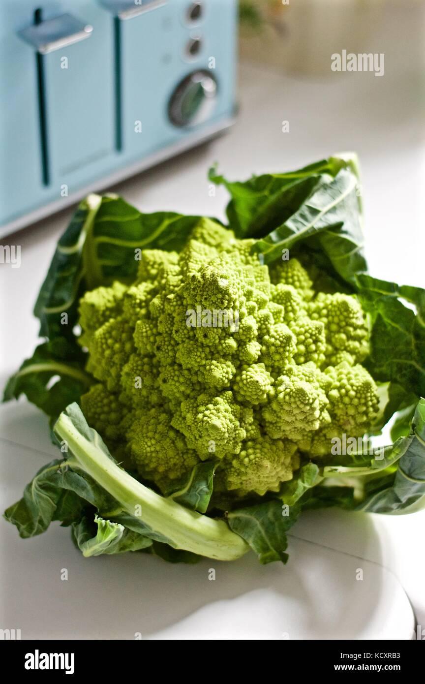 Romanesco broccoli in the kitchen - Stock Image