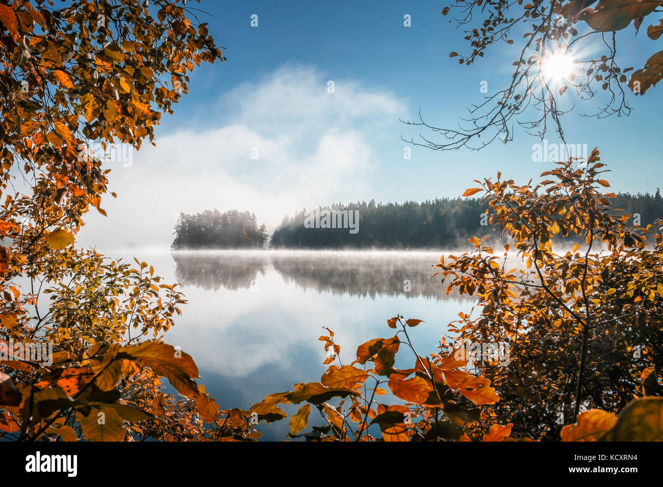 Scenic view with fall colors and peaceful lake at autumn morning in Liesjärvi National Park, Finland - Stock Image