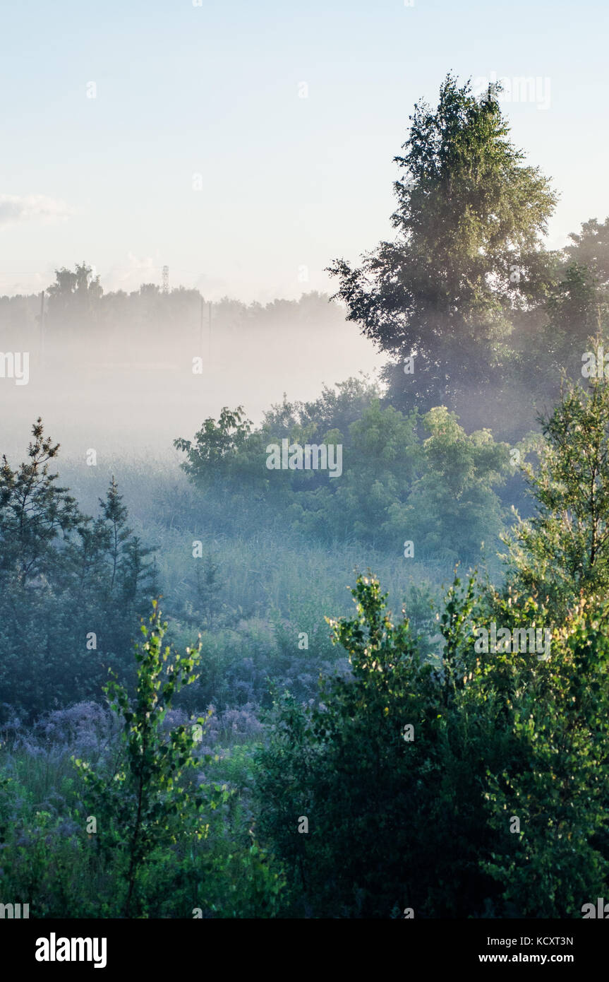 Beautiful morning scene. Latvian landscape with foggy fields. - Stock Image