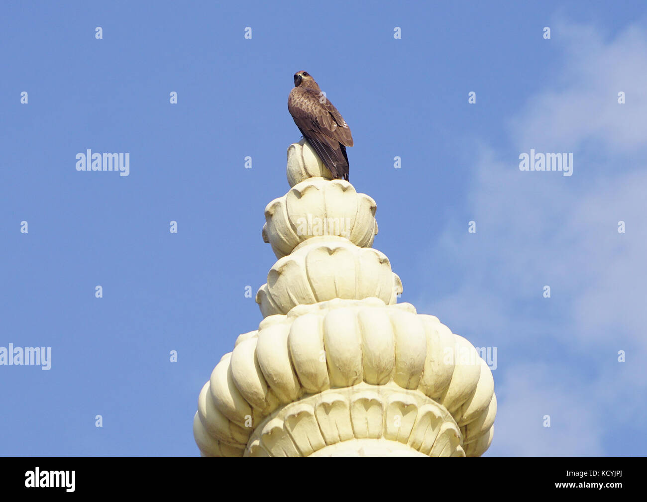 A kite sitting on the top of dome of a temple - Stock Image