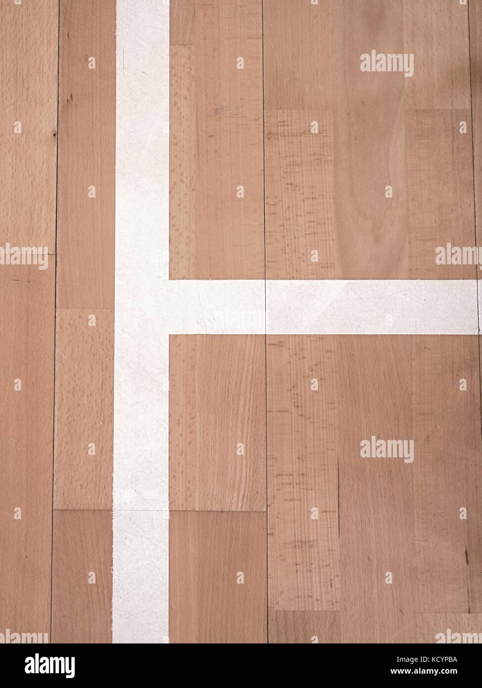 White line in sports hall playground. Renewal  wooden floor of sports hall with colorful marking lines and new lacquered - Stock Image