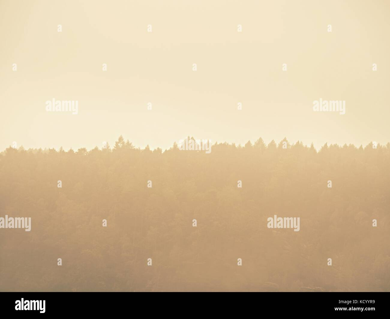 Forest hill hidden im thick fog. Misty dreamy landscape at beginning of September. - Stock Image