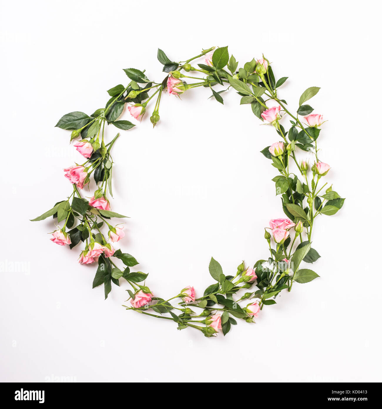 Round Frame With Pink Flower Buds Branches And Leaves Isolated On