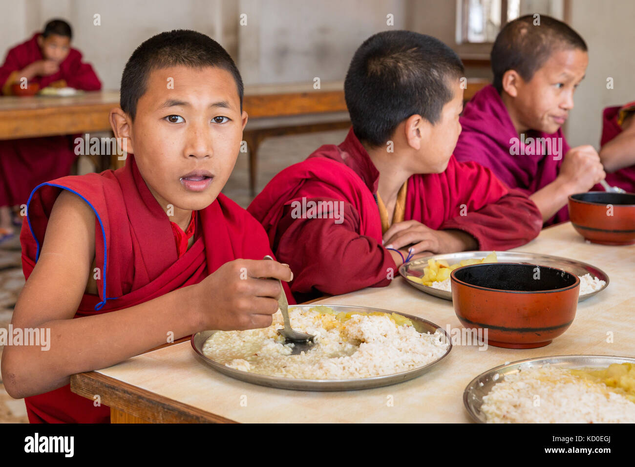 Young monks in Amitabha Monastery having lunch, Kathmandu Valley, Kathmandu, Nepal - Stock Image