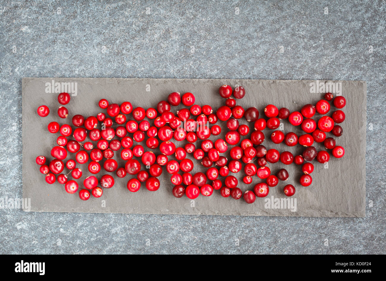 Fresh red cranberries and rosemasy on slate, top view, space for text. - Stock Image