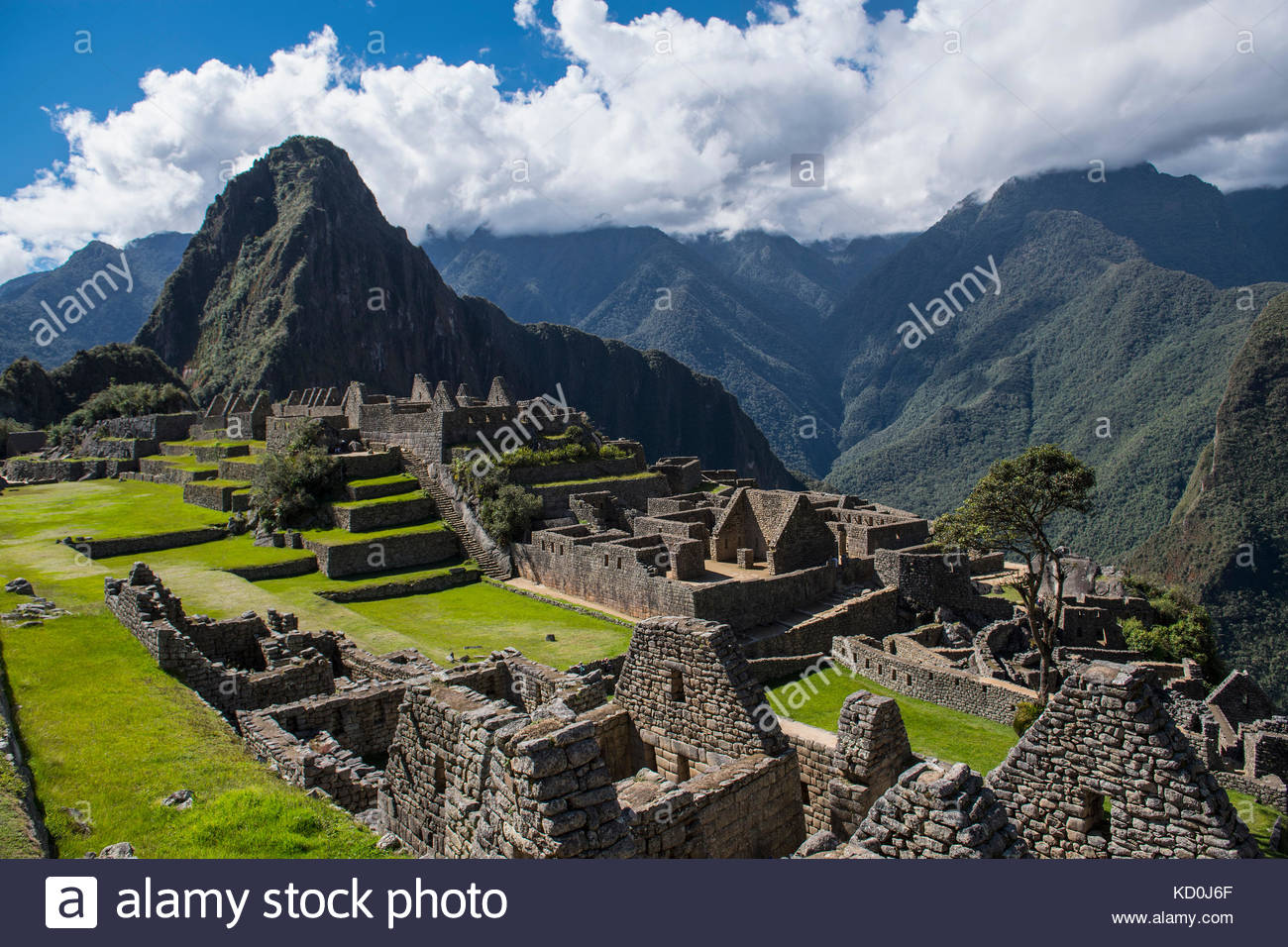 Elevated view of inca ruins, Machu Picchu, Cusco, Peru, South America - Stock Image