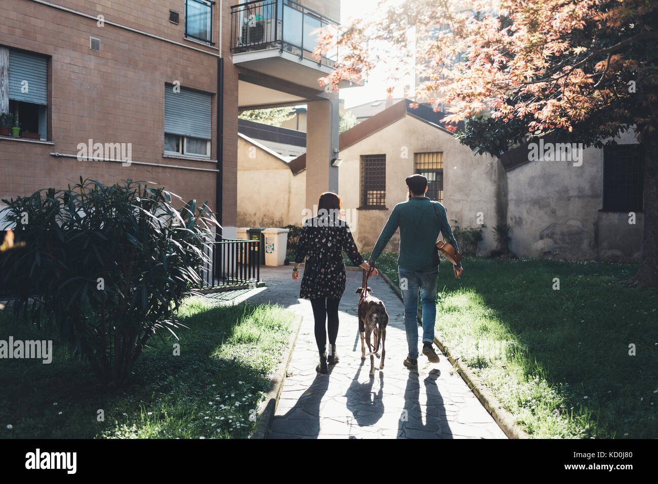 Rear view of couple walking dog in city park - Stock Image