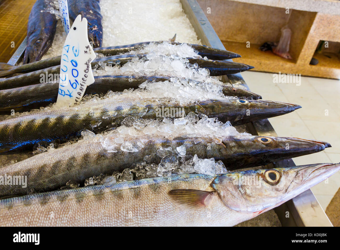 Fishes in a fish market. - Stock Image