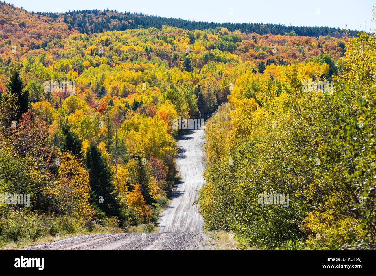 Road to Walker Settlement, New Brunswick, Canada - Stock Image