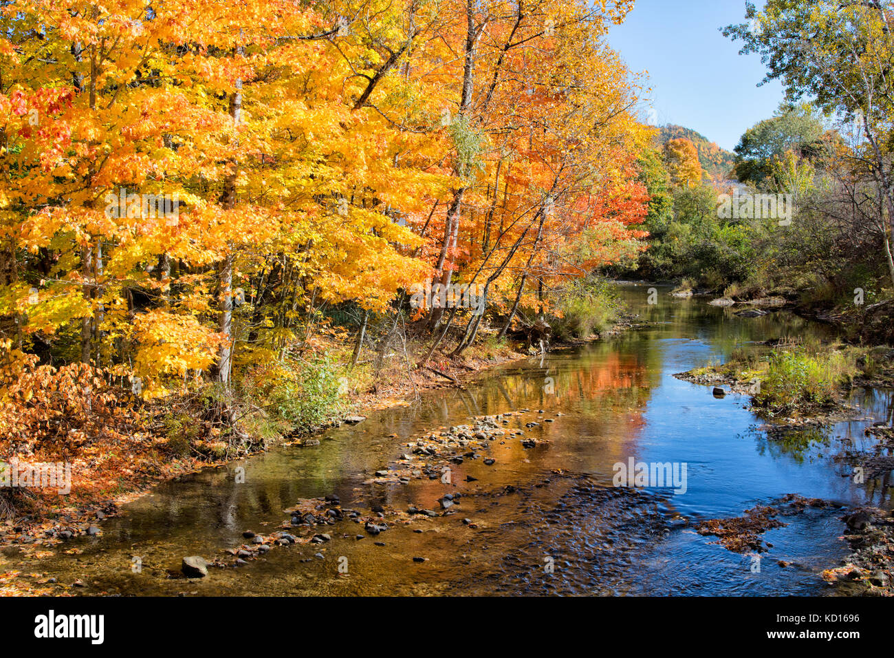 Fall foliage reflected in Trout Creek, Moores Mills, Waterford, New Brunswick, Canada - Stock Image