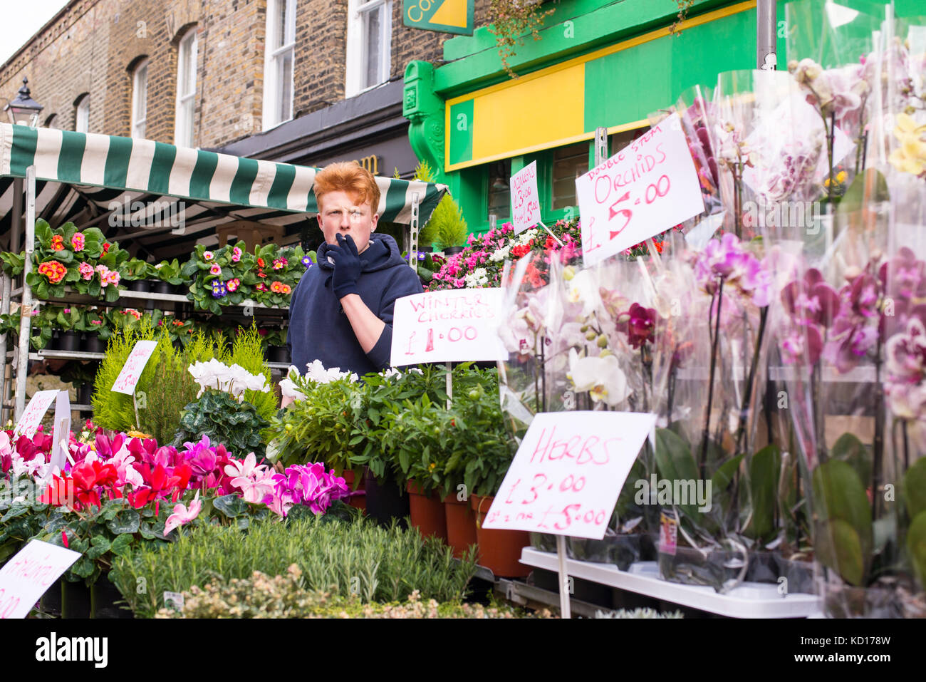 Young man selling flowers and plants in an outdoor stall in the famous Columbia Road Flower Market, near Hackney - Stock Image