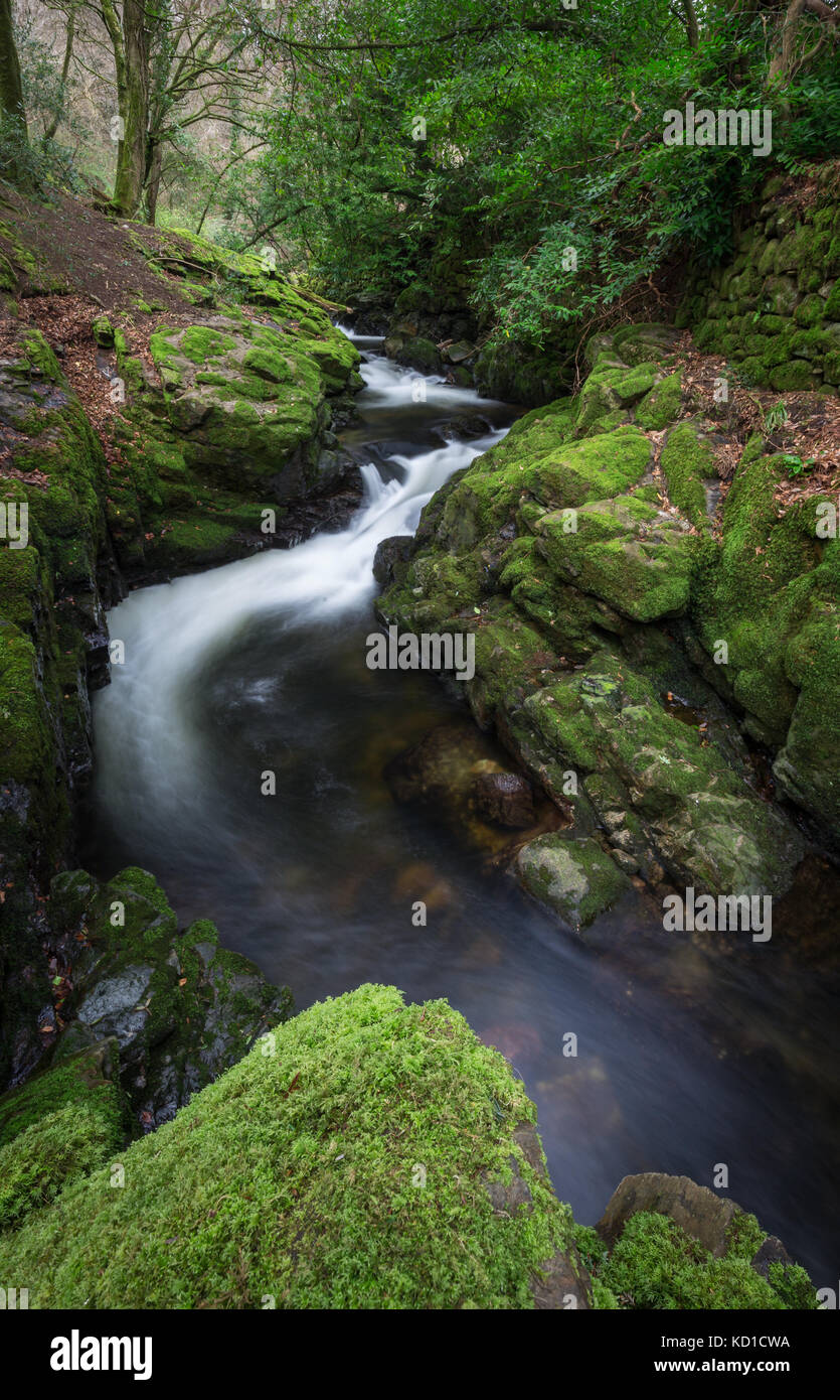 River Erme at Ivybridge, Devon, UK - Stock Image