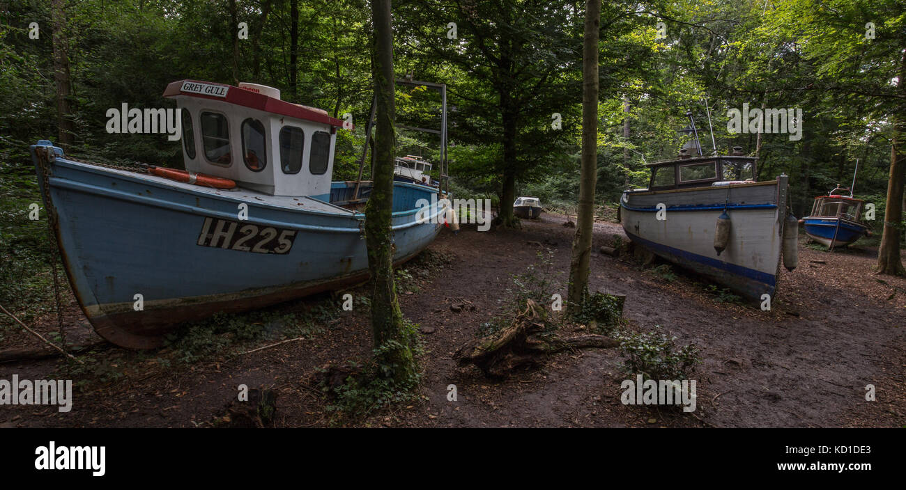 A flotilla of abandoned fishing boats in Leigh Woods nr Bristol.An exhibition named 'withdrawn' by artist - Stock Image