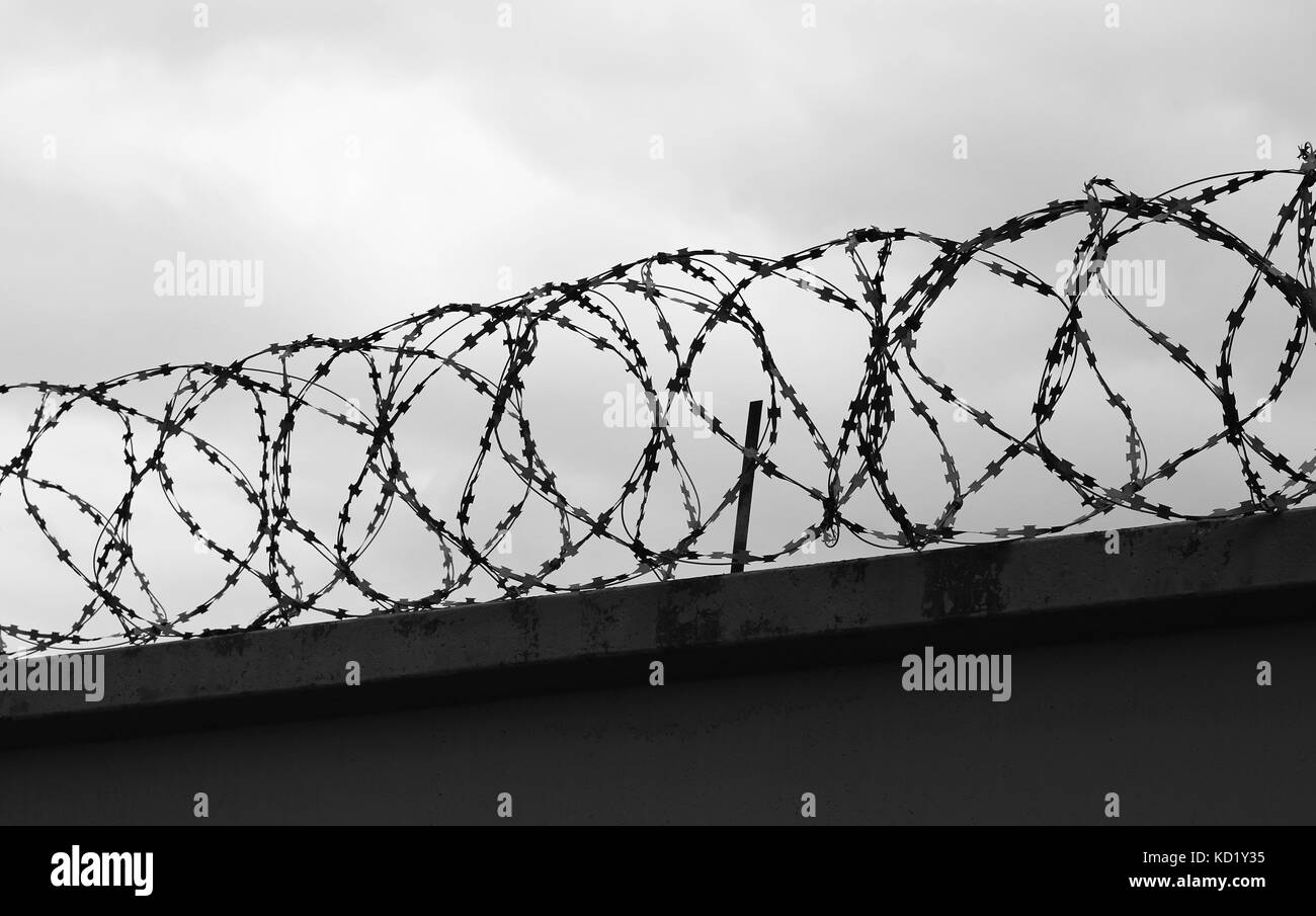 Barb Wire Fence Black and White Stock Photos & Images - Alamy
