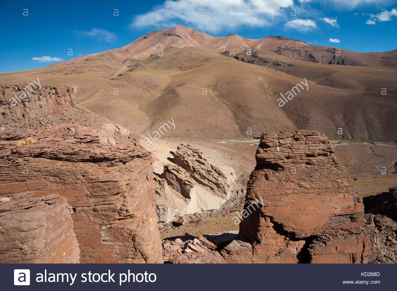 rock formations at the foot of the uturuncu volcano, south licep, bolivia, south america Stock Photo