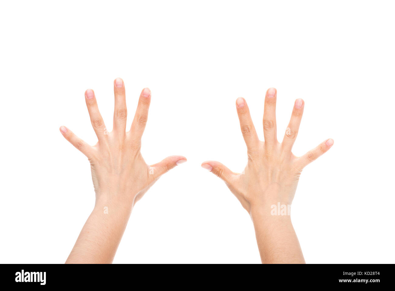 hands - Stock Image