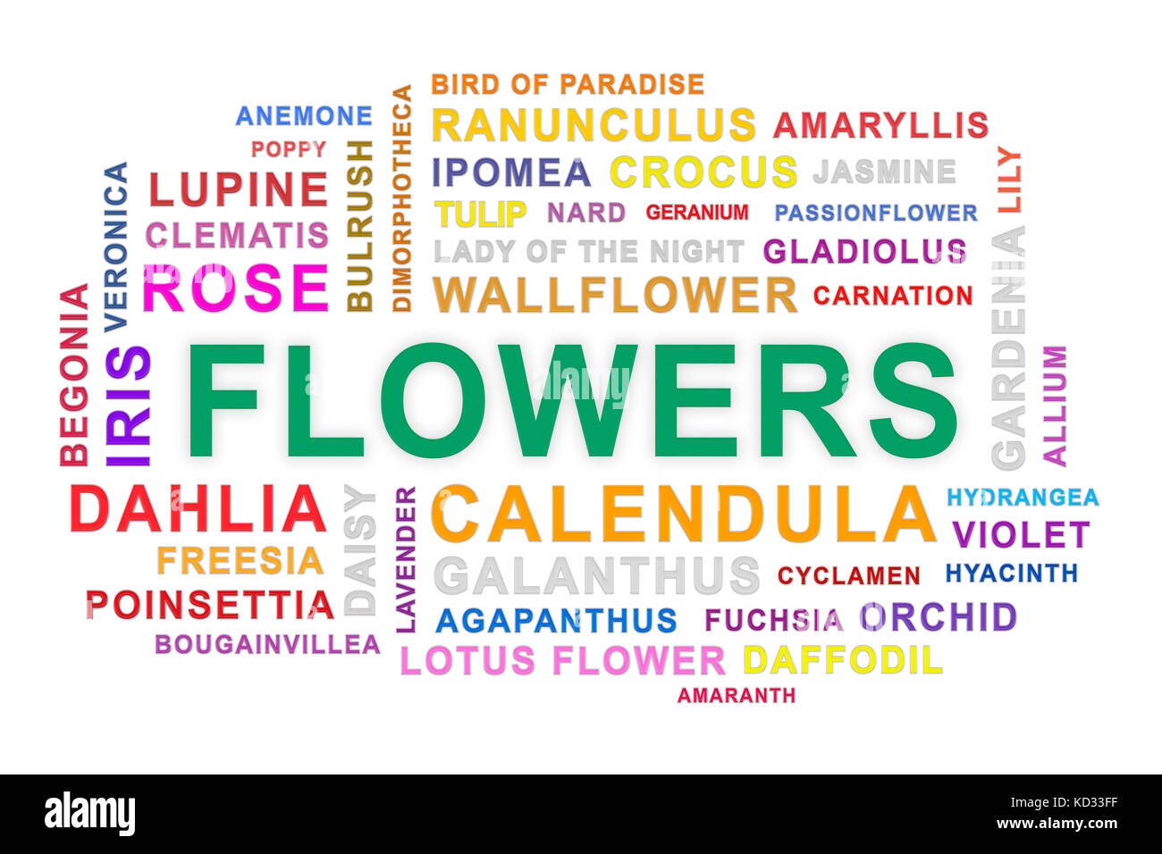 Flowers word cloud on white background. - Stock Image