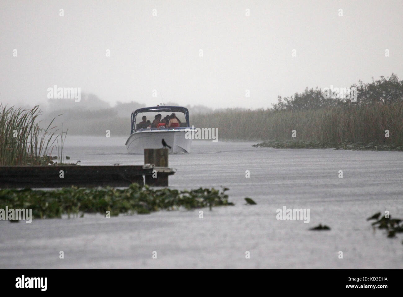 A family of pleasure boaters return home to the dock at Everglades Holiday Park in Ft. Lauderdale on a rainy weekend - Stock Image