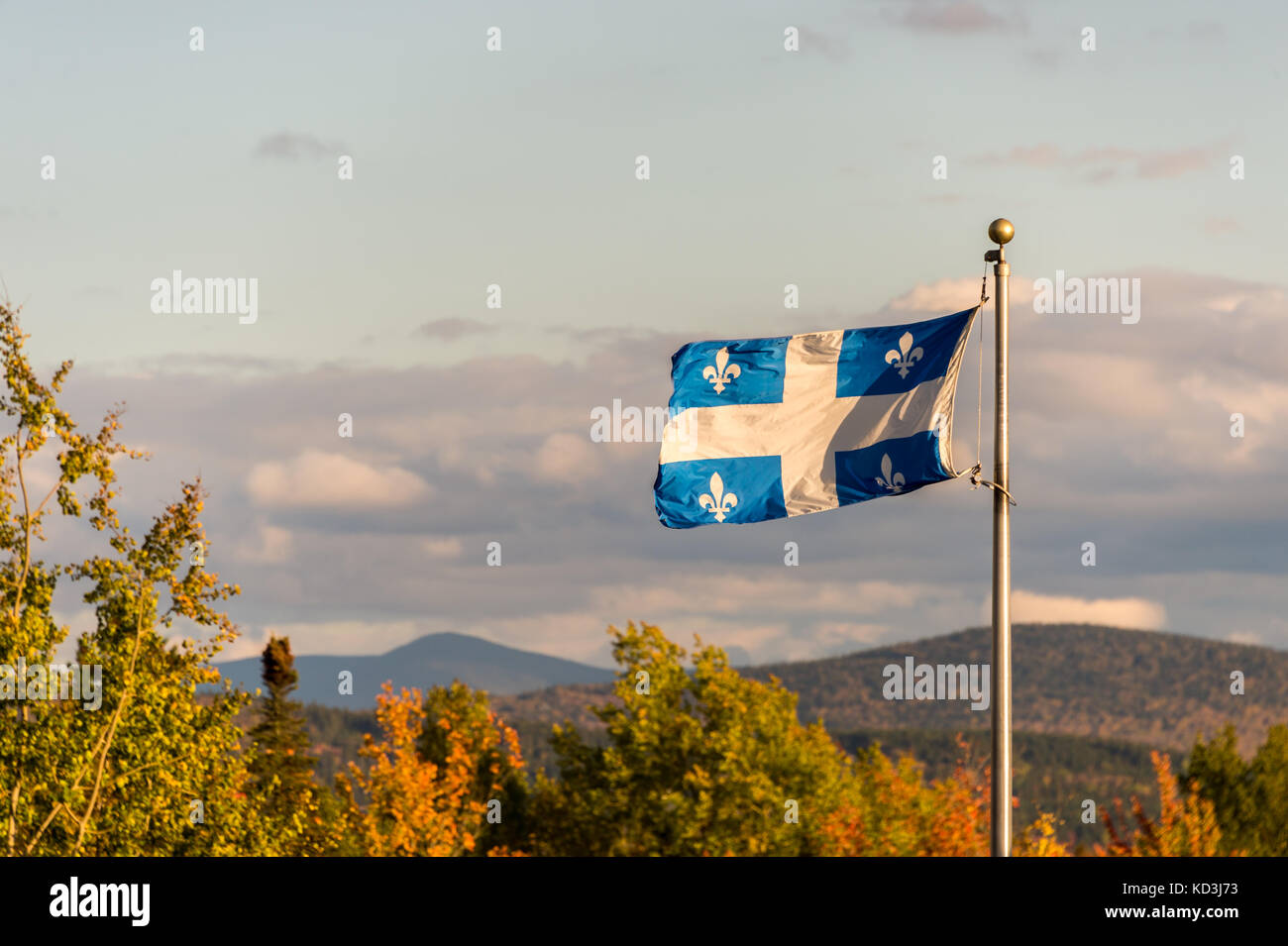 Quebec flag and fall colours - Stock Image