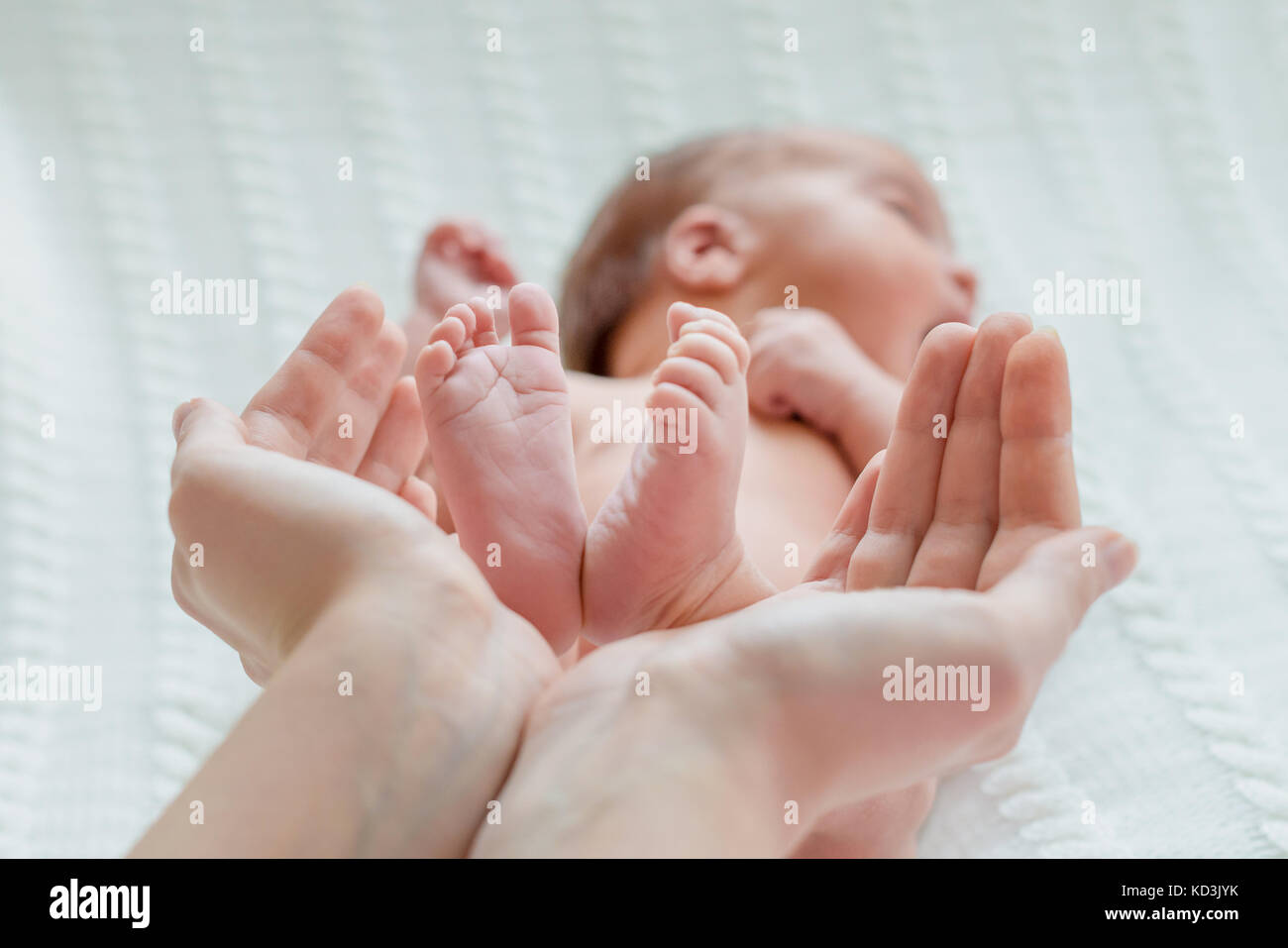Baby feet in mother hands - Stock Image