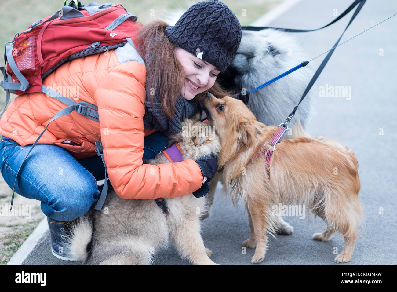 Mid-age beautiful woman hugs and cuddles three dogs - Stock Image