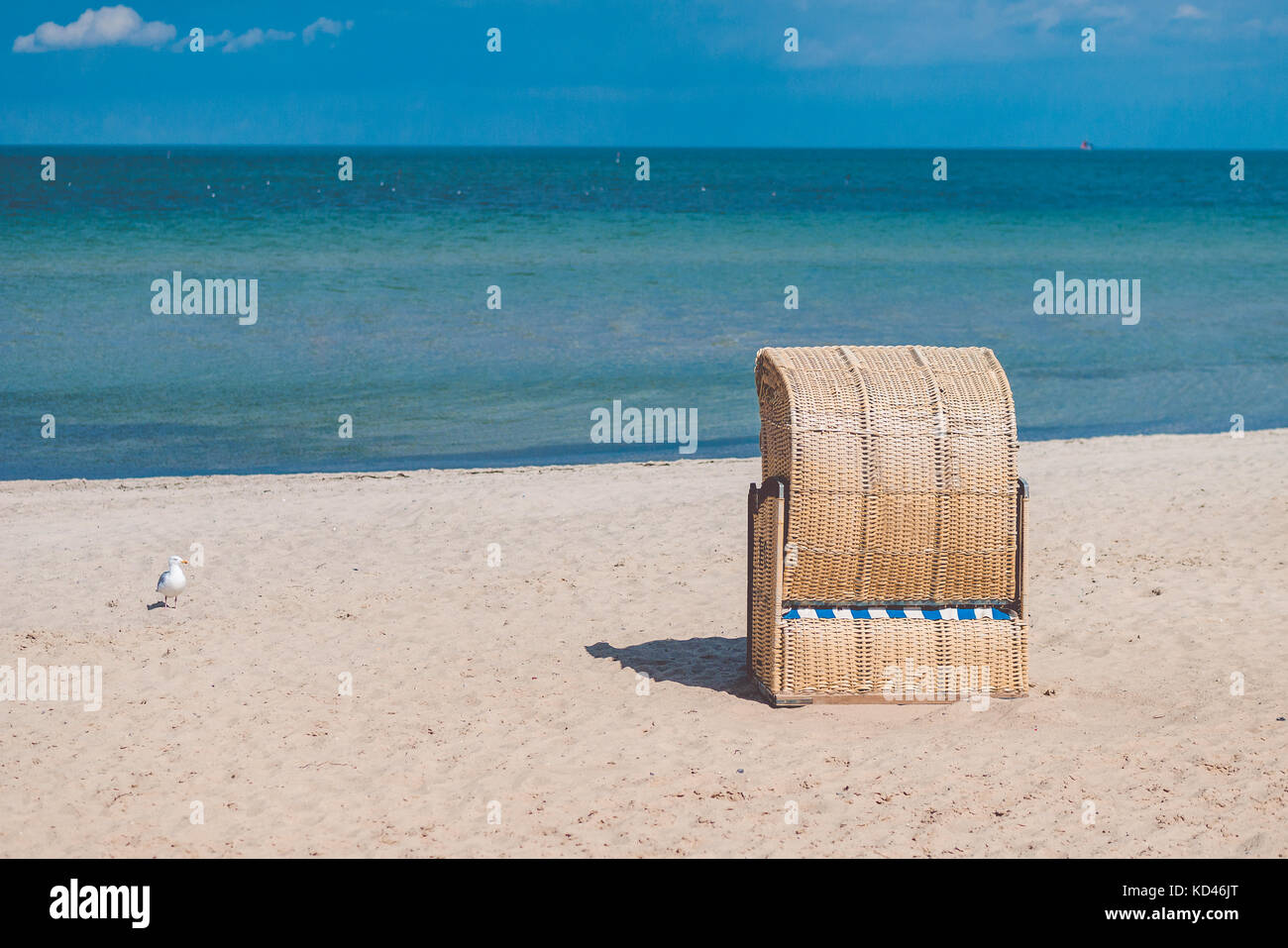 One roofed chair on empty sandy beach in Travemunde. One lonely seagull beside. Germany - Stock Image