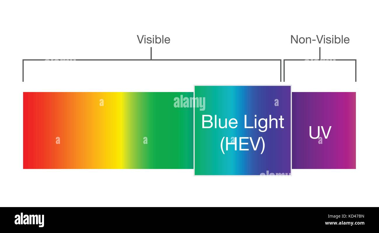 Blue light in visible spectrum. - Stock Vector
